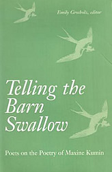 barn-swallow